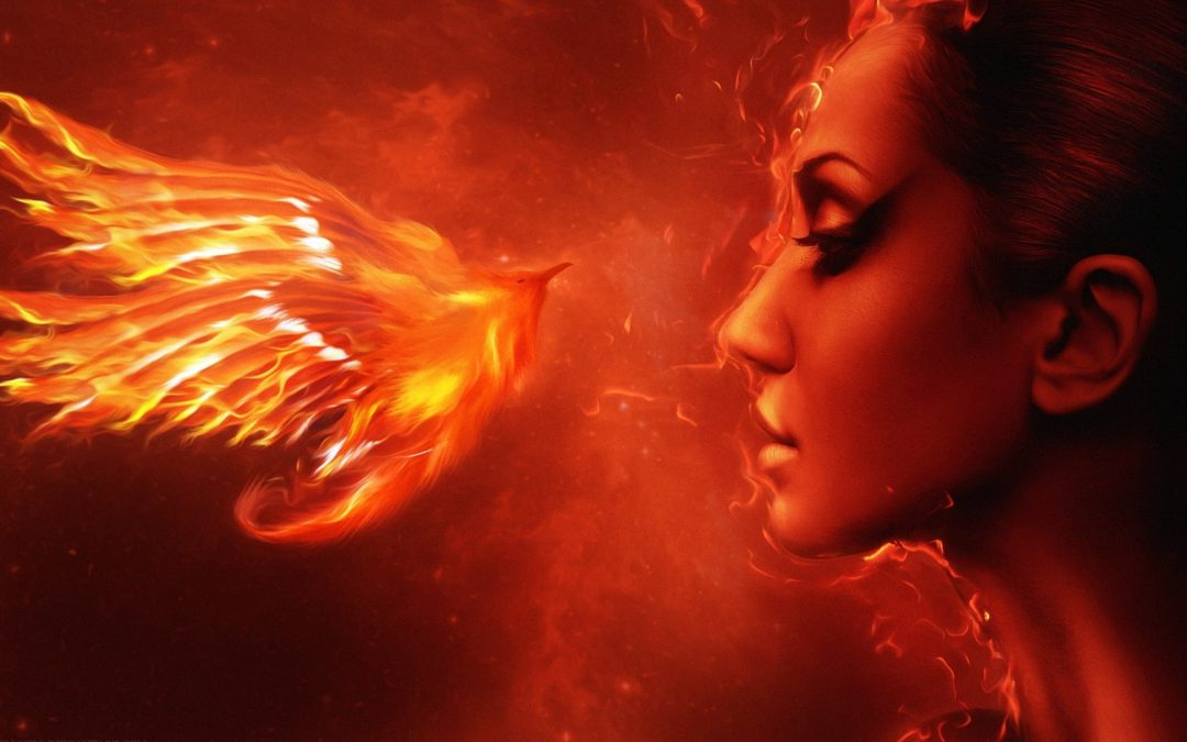 The End … and the Beginning… a Phoenix Rising!